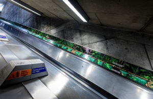 Westminster Jungle vinyl escalator graphics