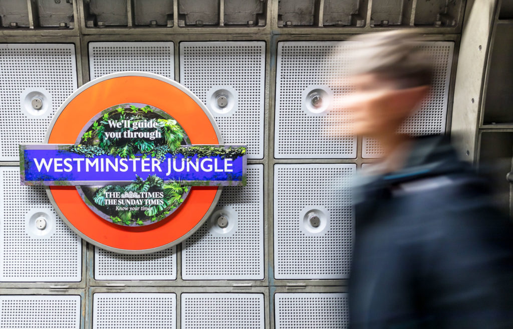 Westminster Jungle hero banner